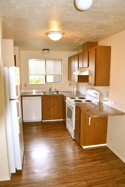 Pet Friendly for Rent in Albany