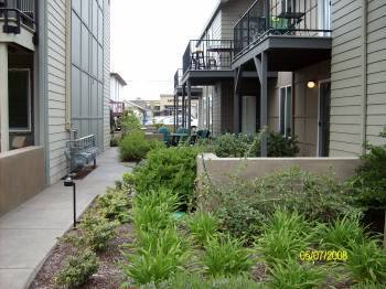 155 East 19th Ave #2, Eugene, OR 97401