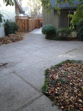 Helen_Dr._3561_Pleasanton-_Yard1.jpg