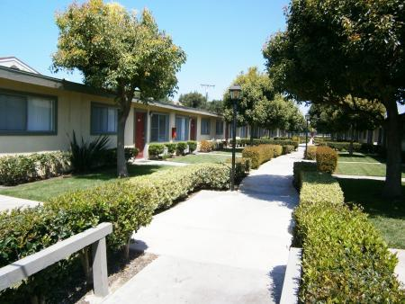 Apartment for Rent in Buena Park