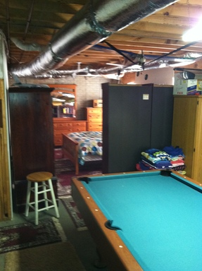 basement and above ground pool recently renovated with new kitchen