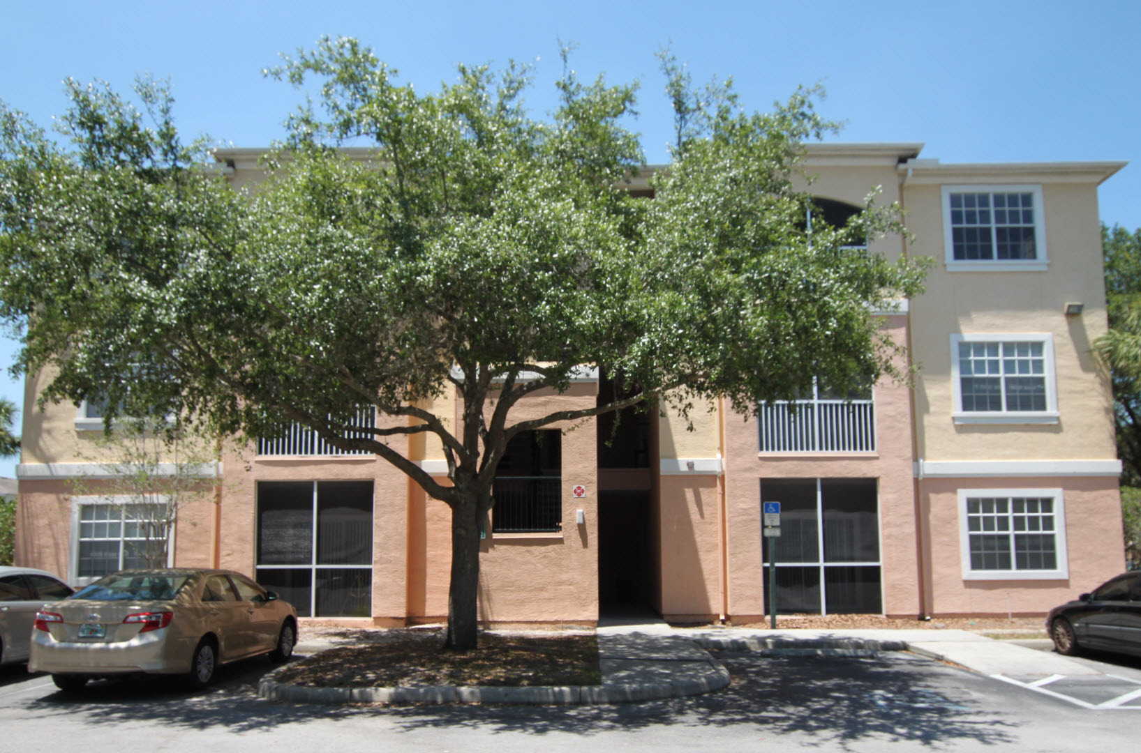 Apartments and houses for rent near me in 33637 for 13305 tampa oaks blvd temple terrace florida 33637